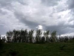costanera-nubes.JPG