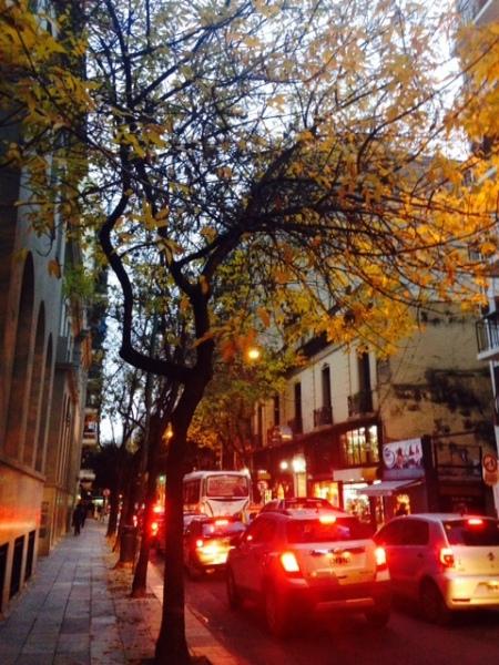 otoño juncal