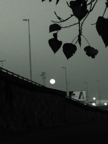 47.Lunaenlaautopista