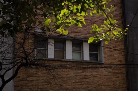 30.ventanas4_LR