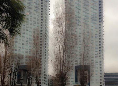75-edificios-gemelos-xx