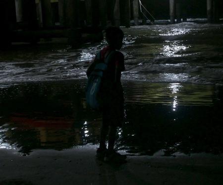 82.SC noct nene mar