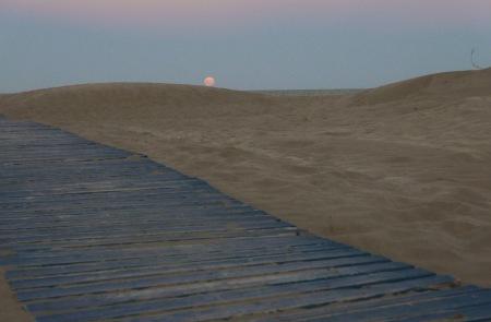S79.luna llena y duna