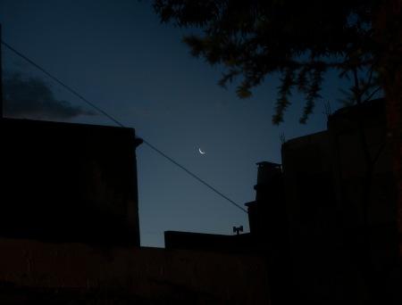 s392.luna uña f 2