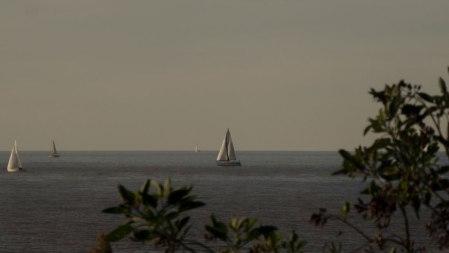 O30-reserva-veleros-1