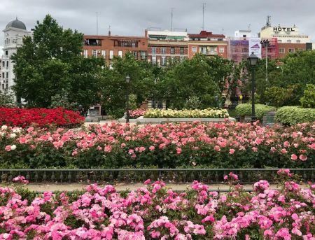 Madridprimaveral