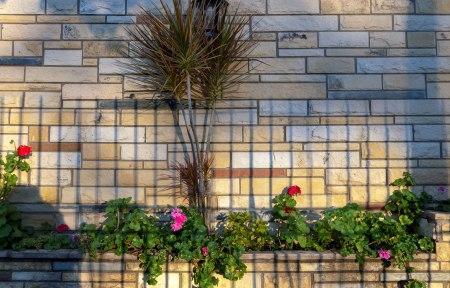 I21-flores-pared