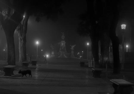 I46-niebla 4 ago byn 2