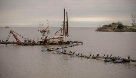 I63-CN-pajaros-barco-punta
